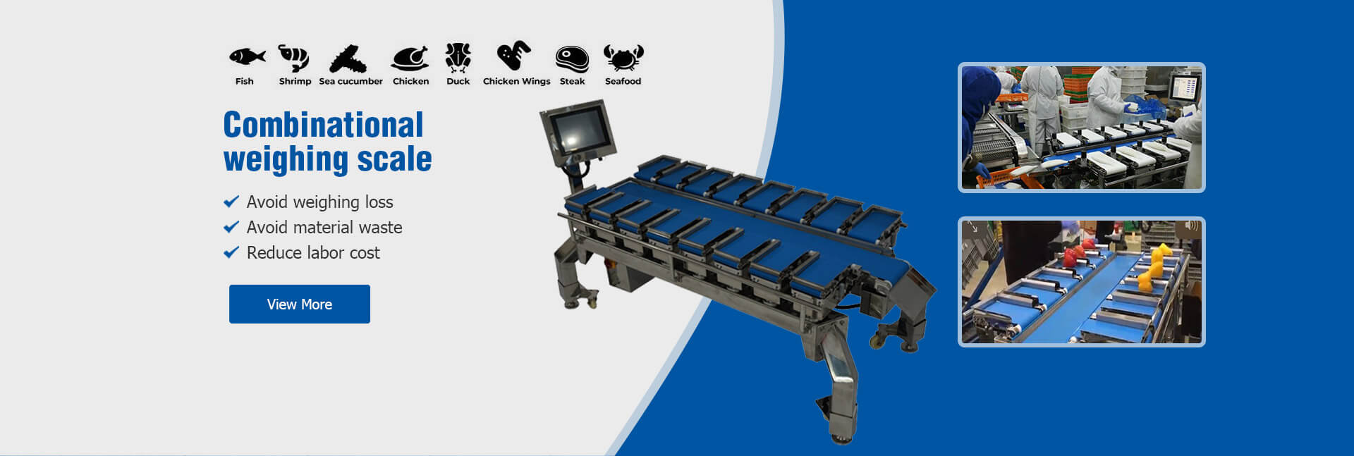 Combine Weighing Scale